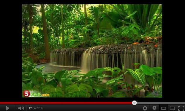 """video-of-beautiful-garden-around-the-world"""