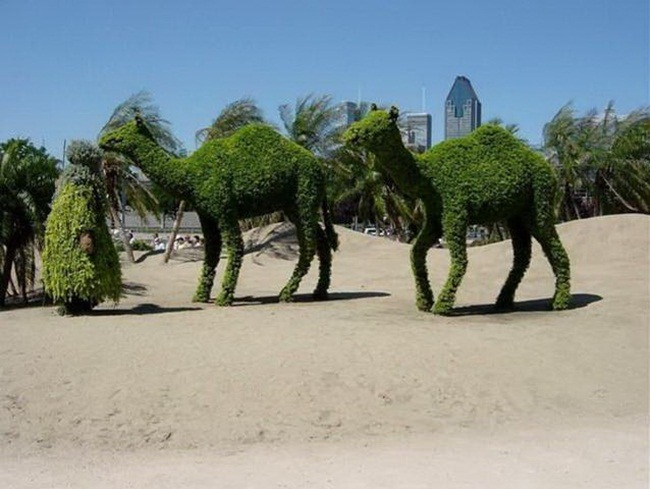 topiary-animals- (12)