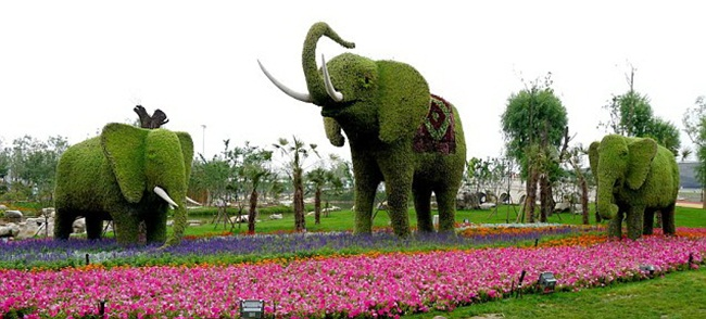 topiary-animals- (19)