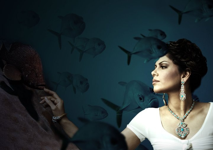 beautiful-jewelry-of-hadiqa-kiani- (1)