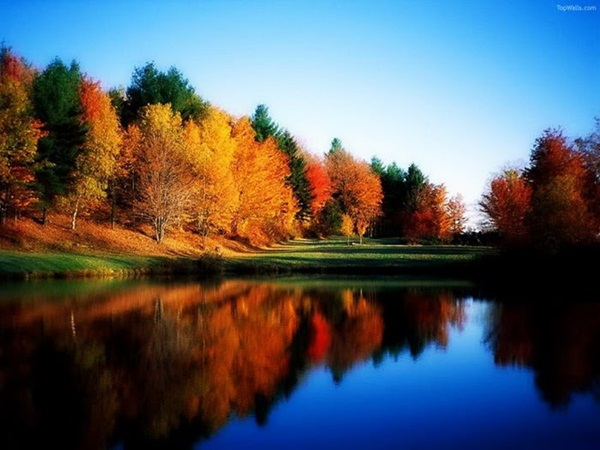 lake-reflection-26-photos- (18)
