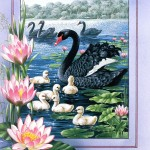 beautiful-birds-paintings- (5)