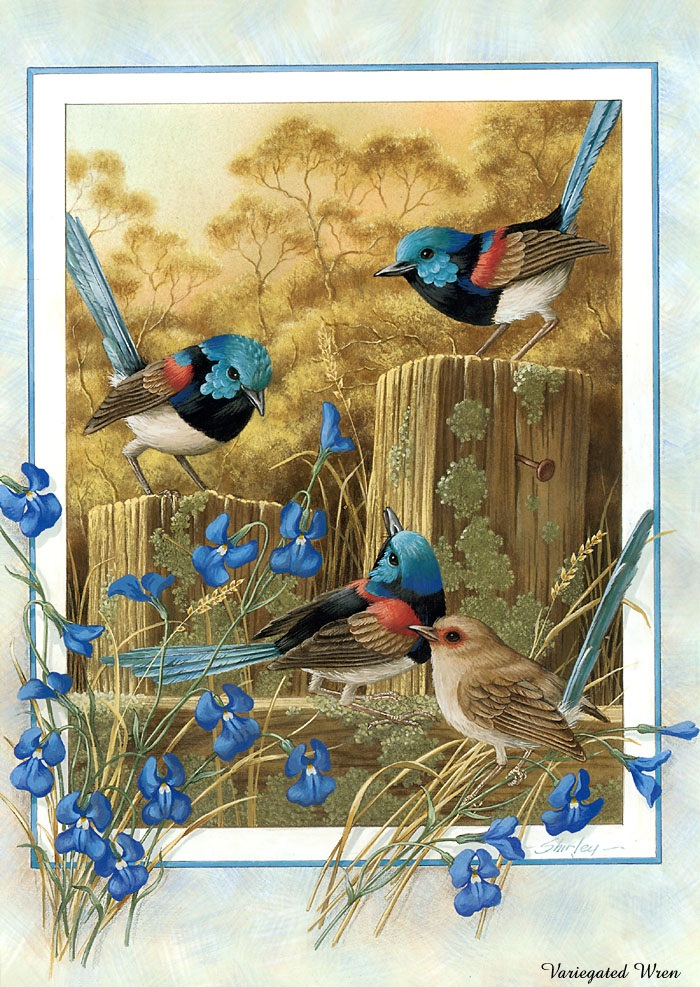beautiful-birds-paintings- (8)