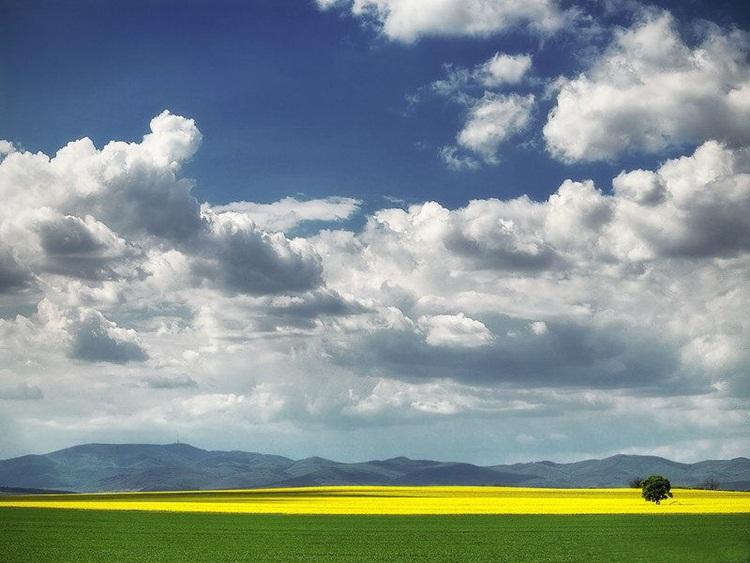 fabulous-nature-scenery-25-photos- (1)