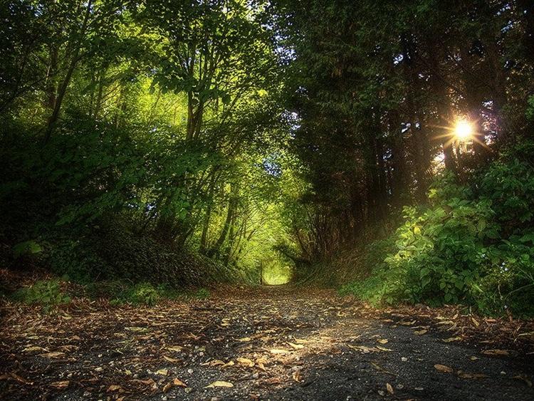fabulous-nature-scenery-25-photos- (2)