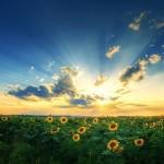 fabulous-nature-scenery-25-photos- (13)