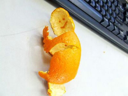 funny-orange-peel- (8)