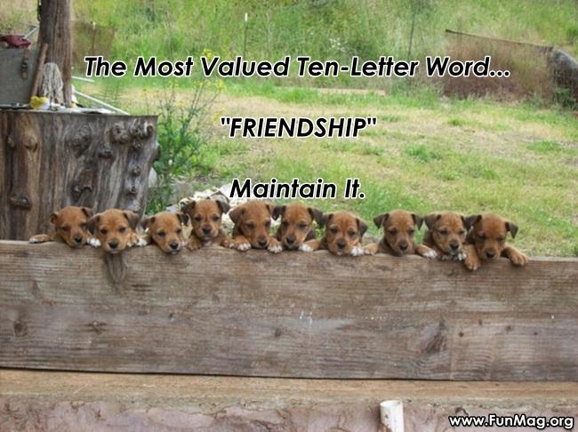 ten-valuable-words- (10)