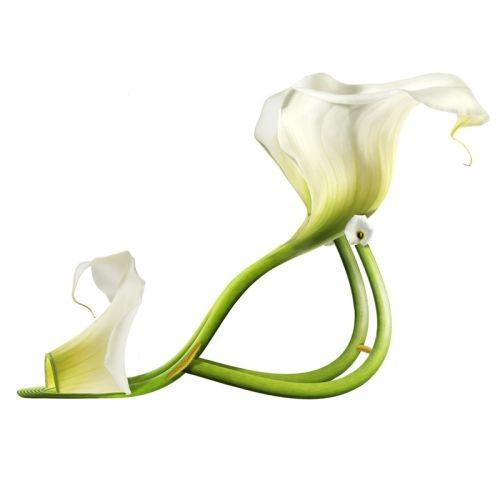flower-shoe- (8)