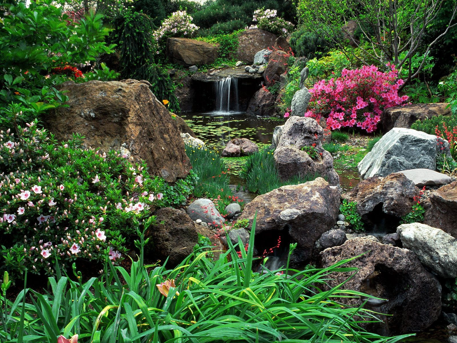 garden wallpaper 16 photos 3 - Beautiful Garden Pictures
