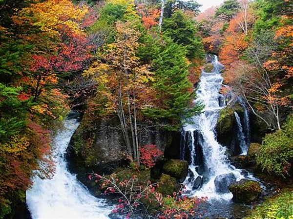 autumn-in-japan- (4)