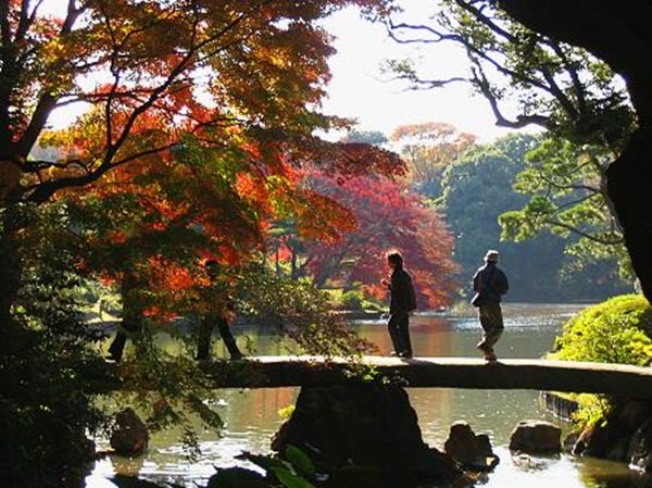 autumn-in-japan- (10)