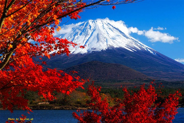 autumn-in-japan- (14)