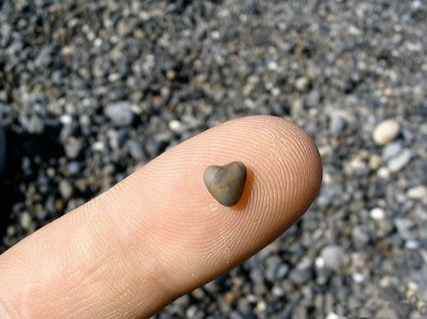 hearts-in-nature- (31)