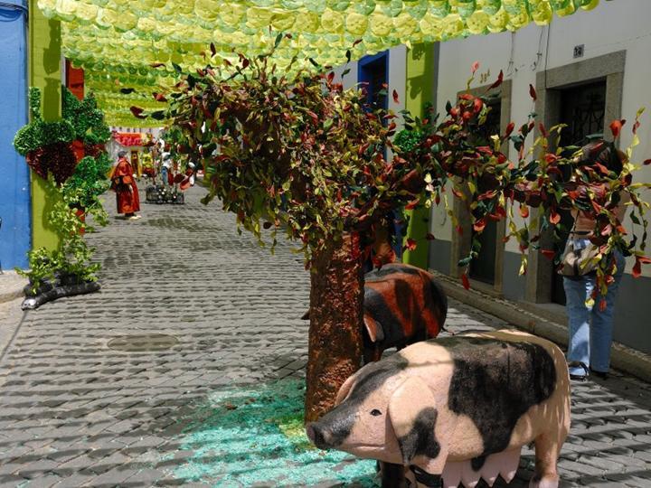 paper-festival-in-portugal- (7)
