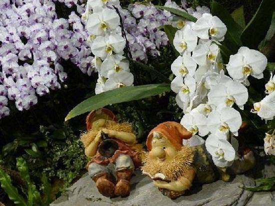 taipei-flora-exposition- (9)