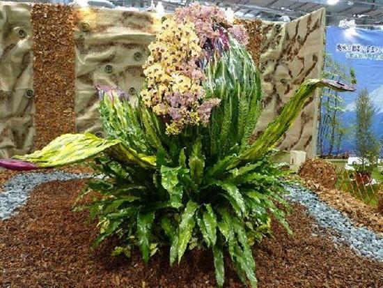 taipei-flora-exposition- (20)