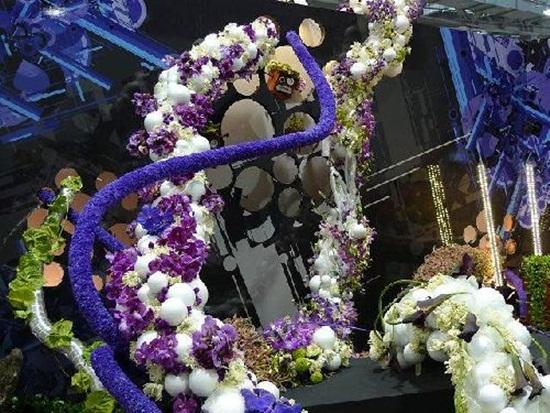 taipei-flora-exposition- (26)