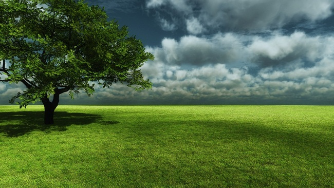 beautiful-green-nature- (11)