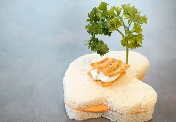 creative-and-unusual-sandwich-ideas-36-photos- (27)