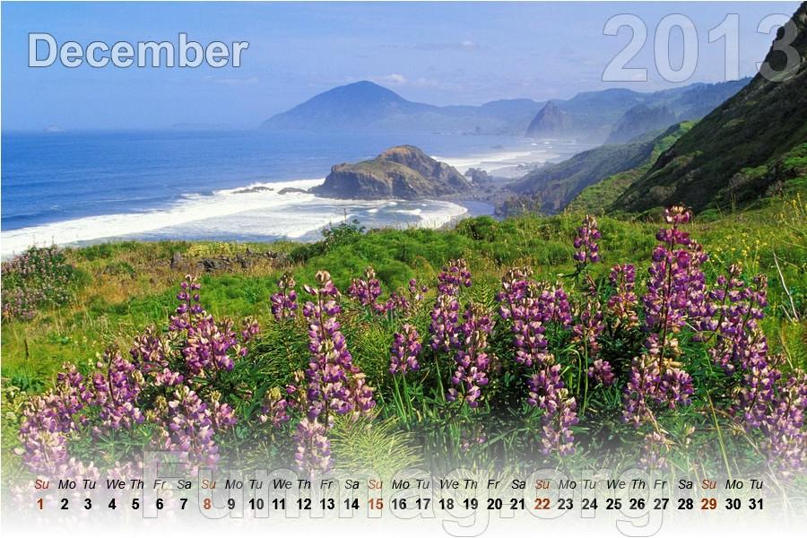 nature-calendar-2013- (12)