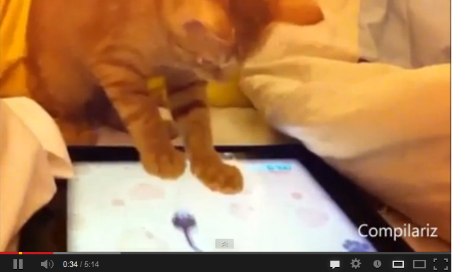 animals-and-ipads-funny-video
