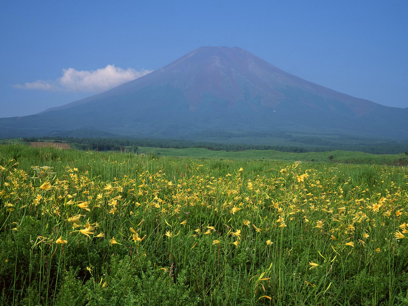 mount-fuji-wallpapers- (11)