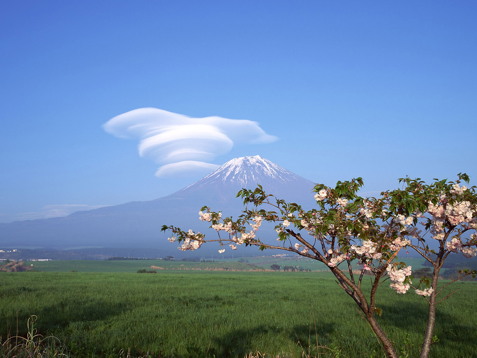 mount-fuji-wallpapers- (21)