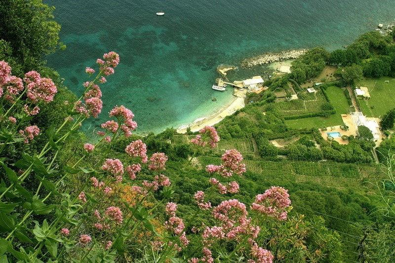capri-island- (17)