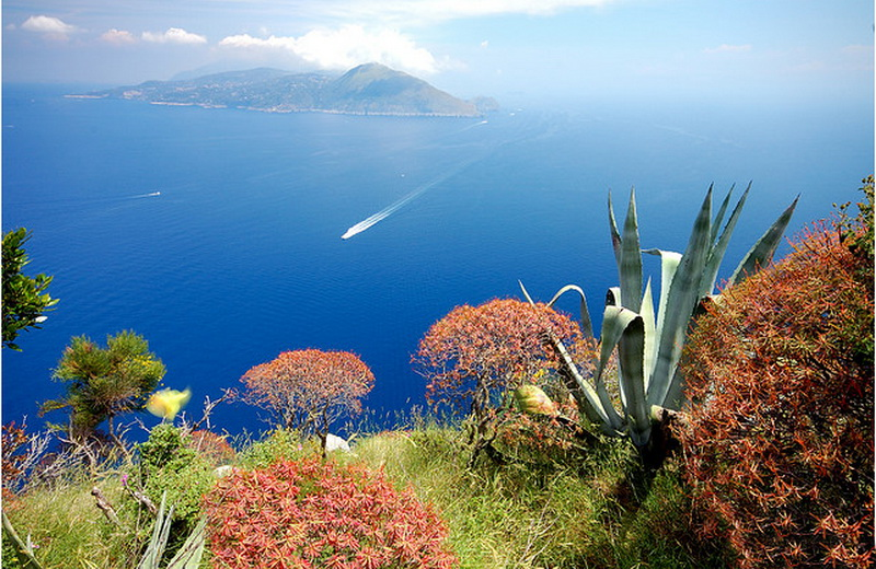 capri-island- (2)