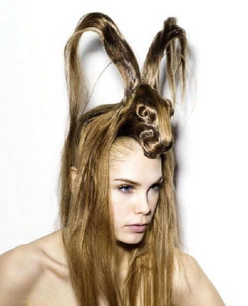crazy-animal-hairstyle- (3)
