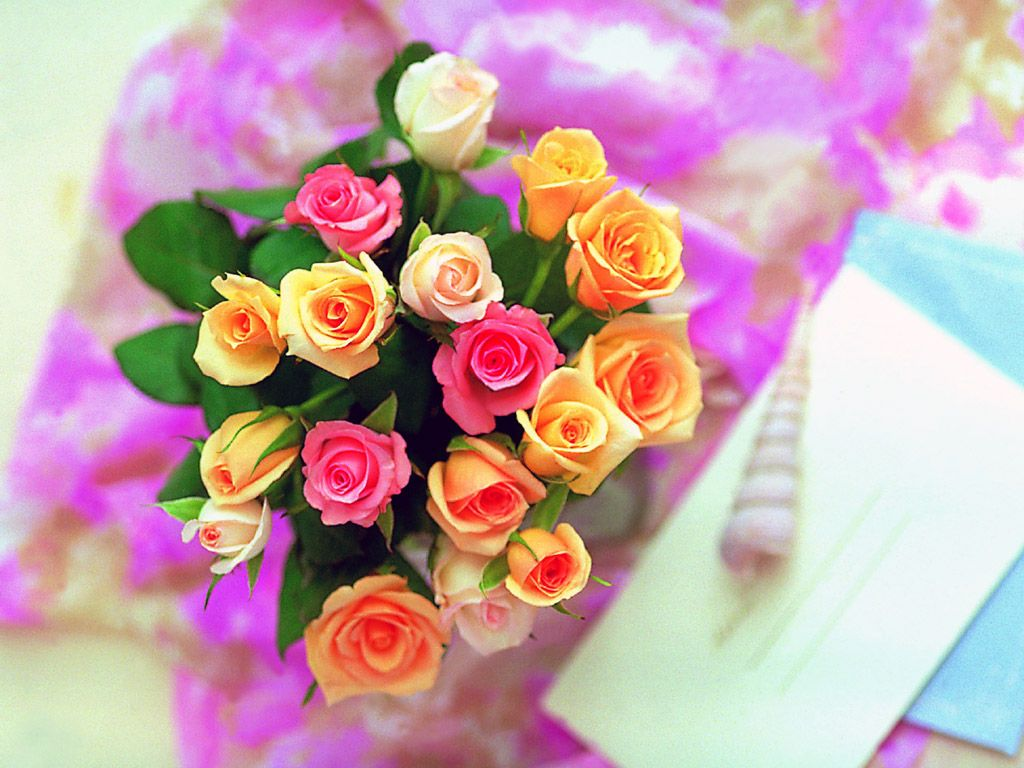 beautiful pictures of roses for wallpaper | adsleaf