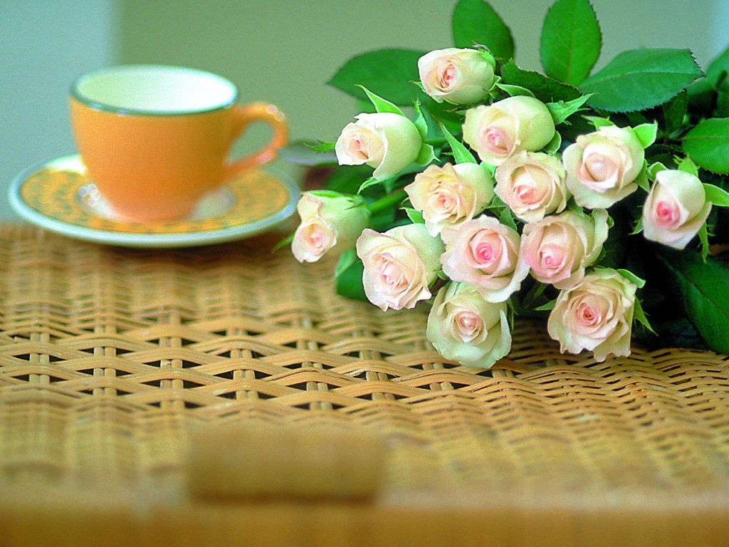 beautiful-roses-wallpapers-20-photos- (20)
