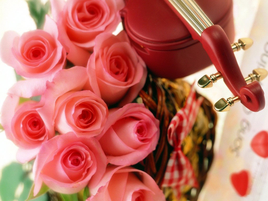 beautiful-roses-wallpapers-20-photos- (9)