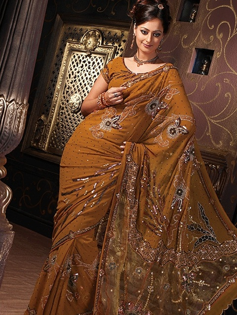 embroidered-fancy-saree-21-photos- (9)