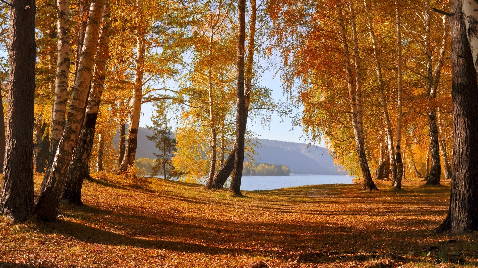 beautiful-autumn-wallpapers- (7)