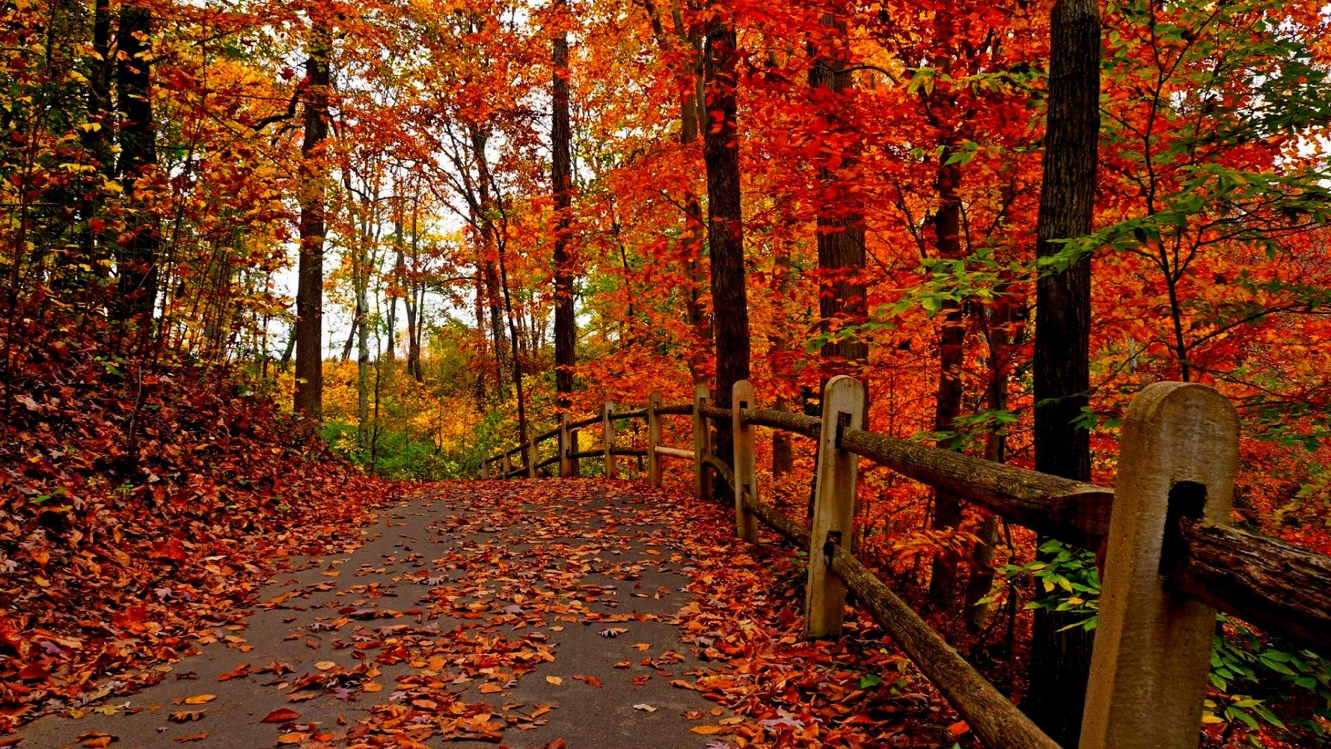 beautiful-autumn-wallpapers- (8)