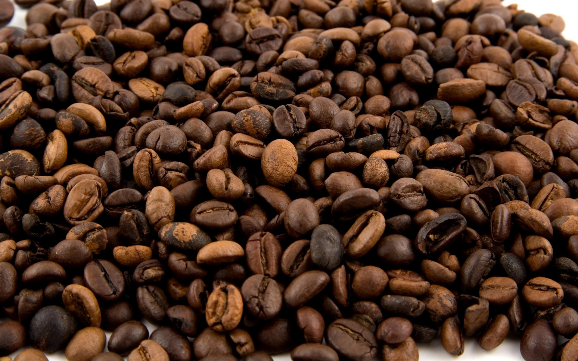 coffee-bean-wallpaper- (11)