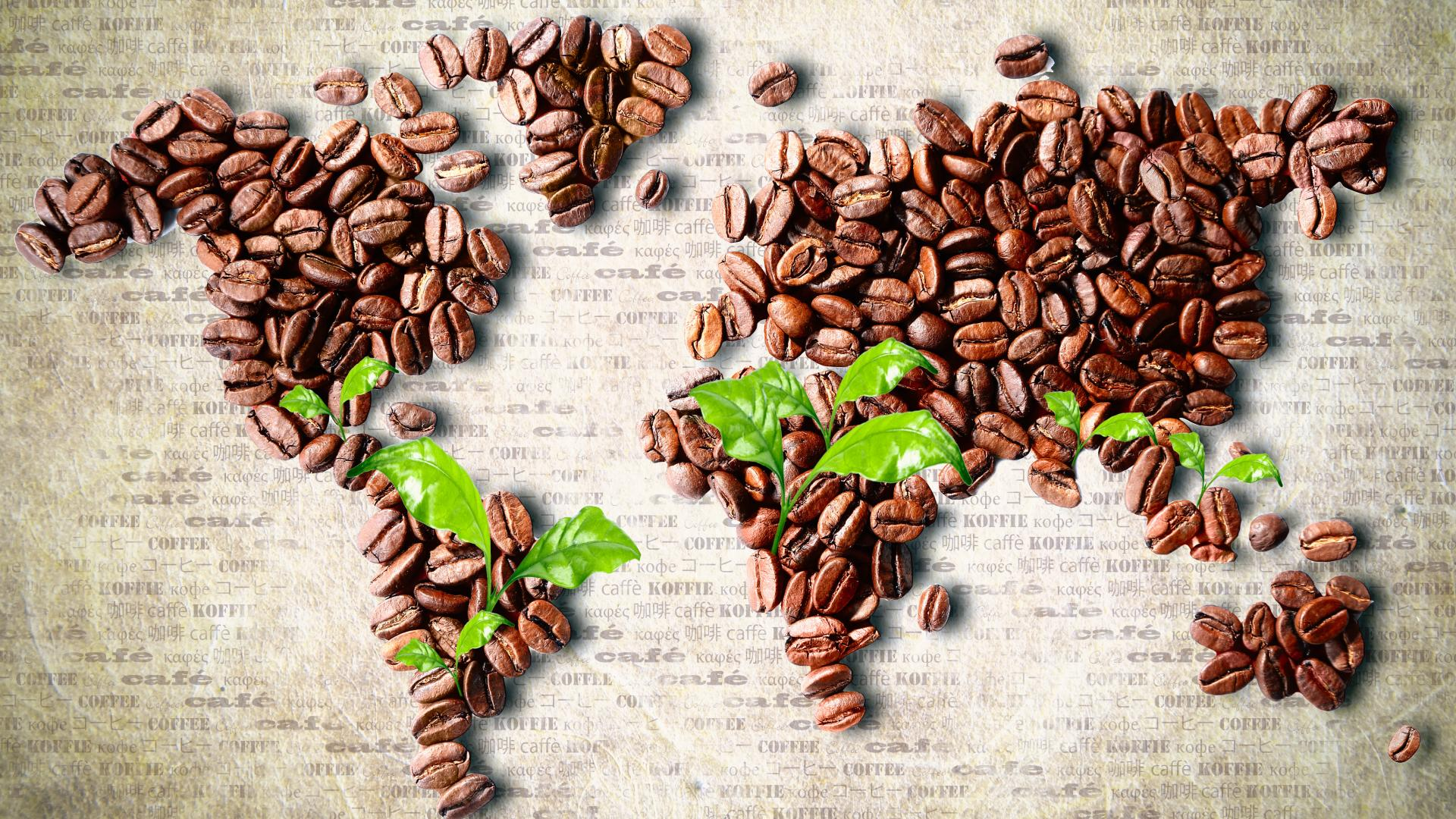 coffee-bean-wallpaper- (24)