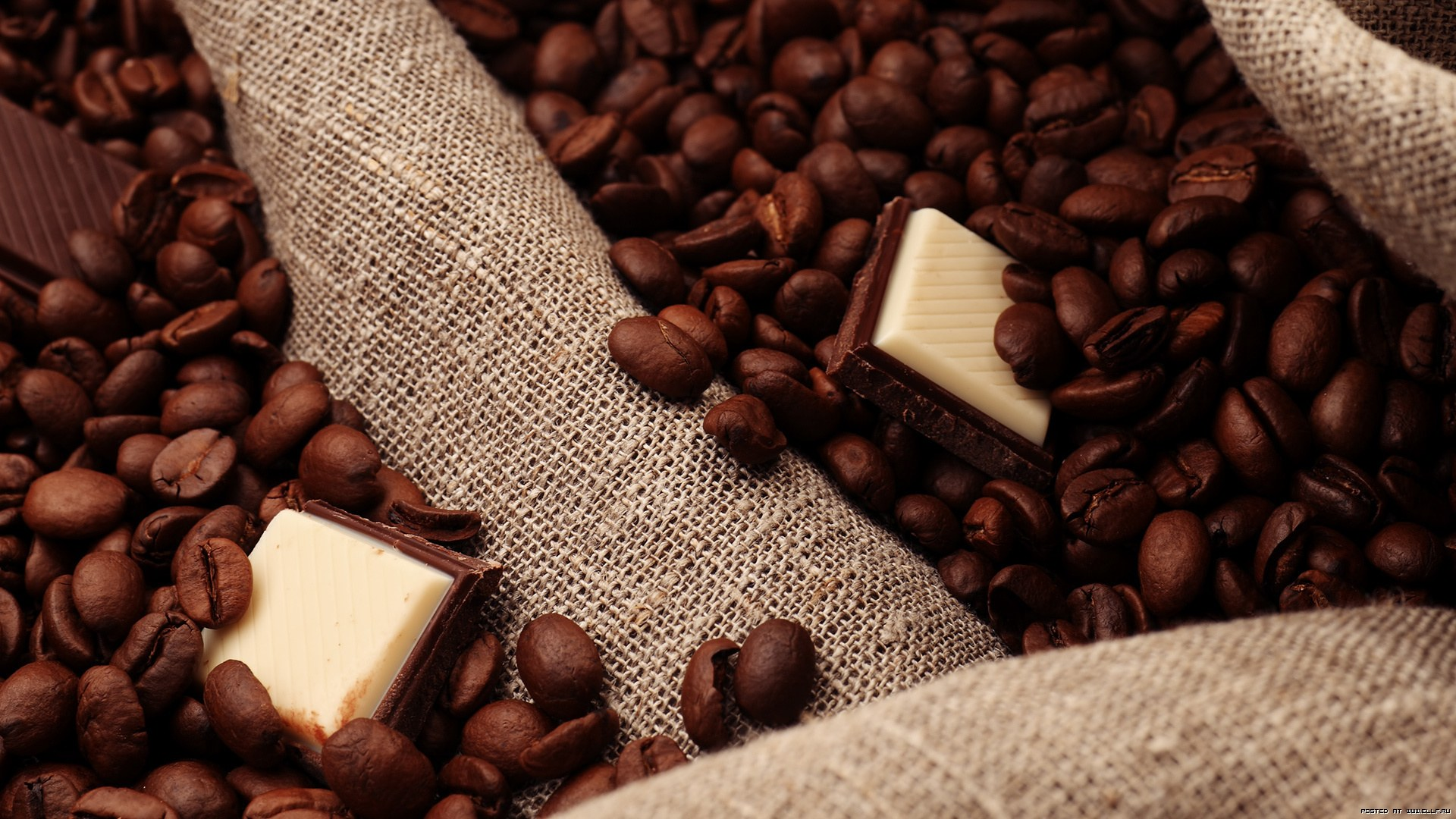 coffee-bean-wallpaper- (27)