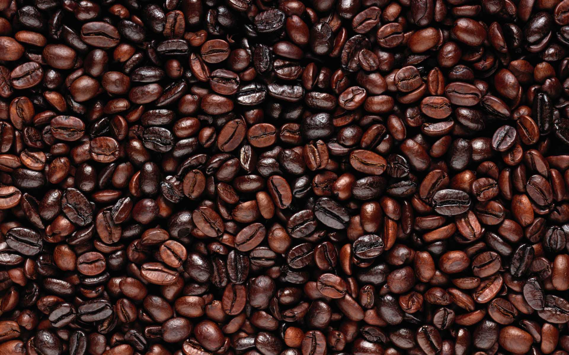 coffee-bean-wallpaper- (7)