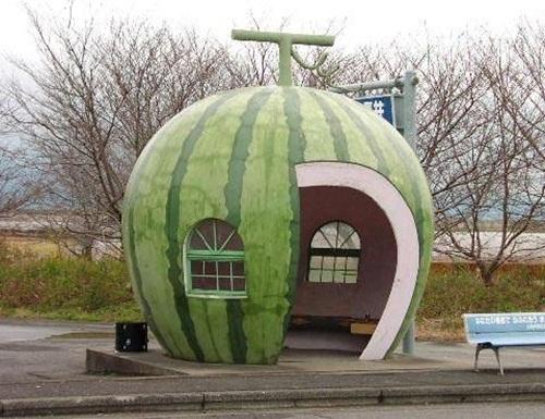 fun-with-watermelon- (12)