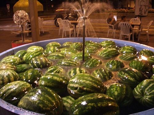 fun-with-watermelon- (25)