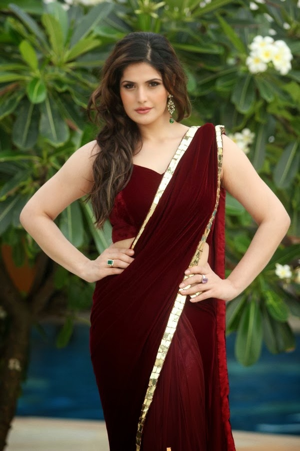 zarine-khan-in-maroon-saree- (3)