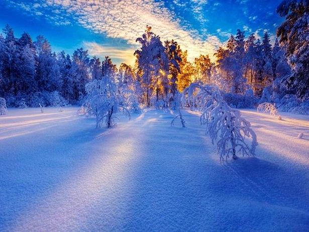 25-winter-photos- (11)