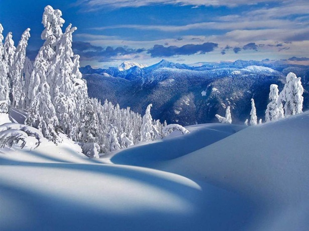 25-winter-photos- (17)