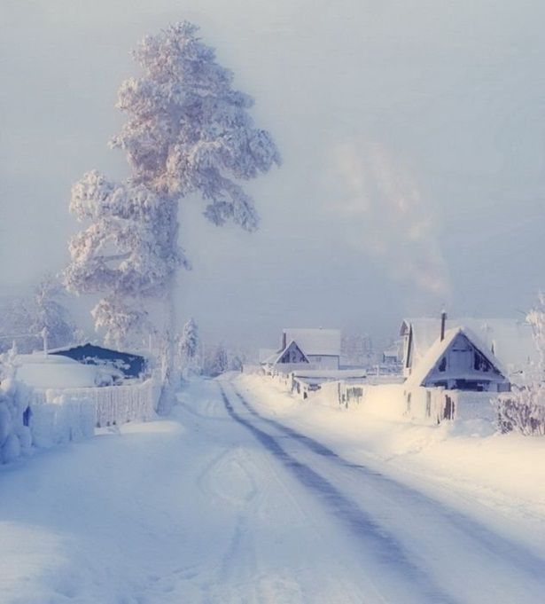 25-winter-photos- (23)