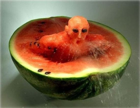 artistic-fruit-creations- (7)