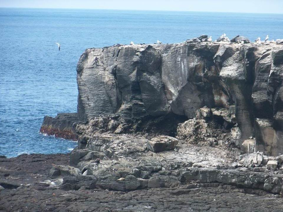 galapagos-island-45-photos- (27)