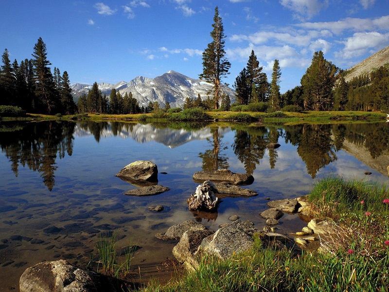 nature-reflections-photos- (6)